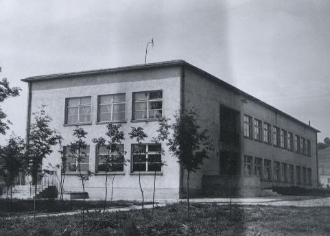 bachorz_szkola